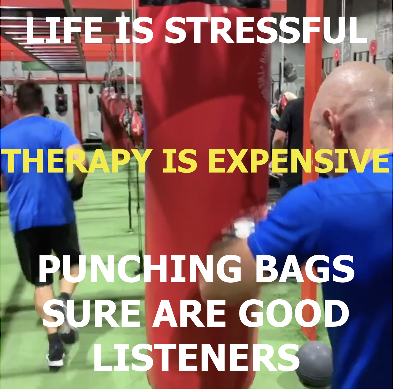 Life is STRESSFUL.  THERAPY is EXPENSIVE!
